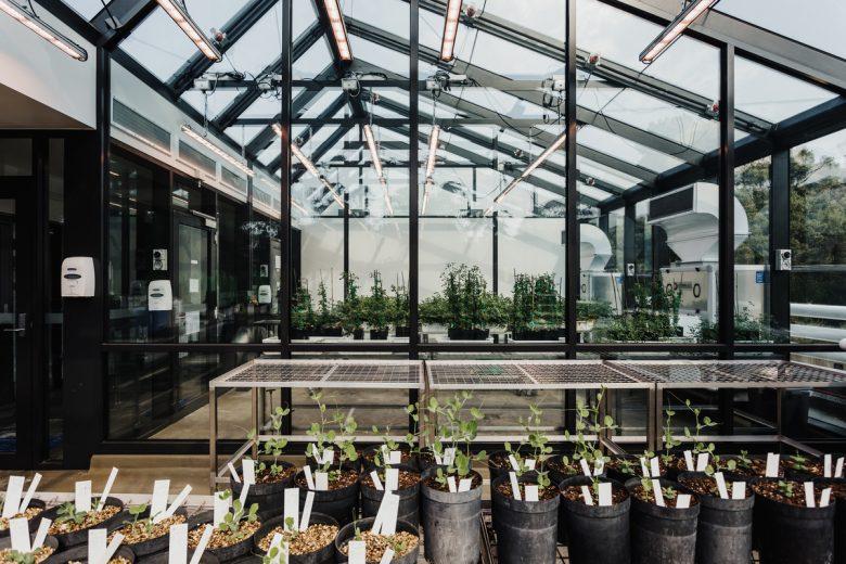 UTAS Glasshouse | Design: Preston Lane Architects | Images: Adam Gibson | Builtworks.com.au