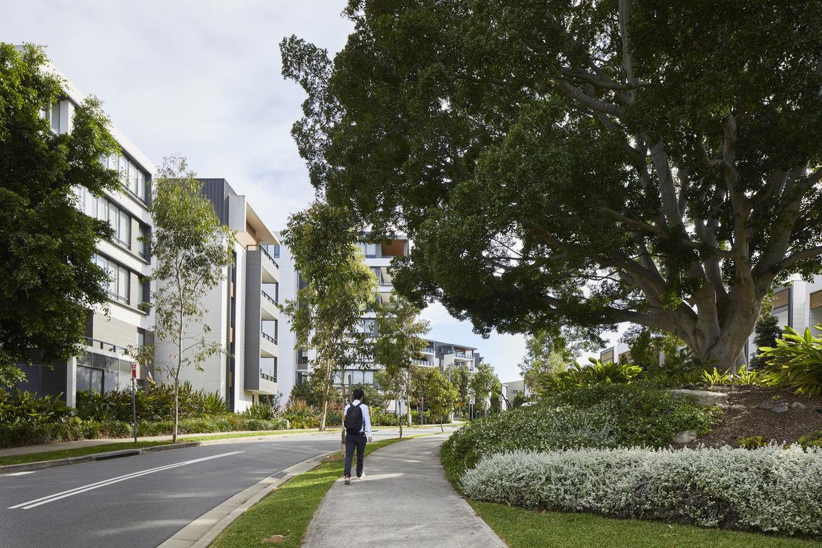 Putney Hill | Design: Cox Architecture | Image: Martin Mischkulnig | Builtworks.com.au